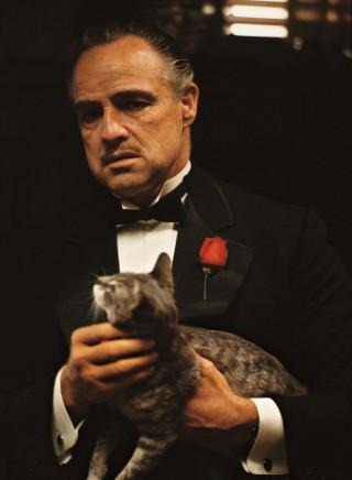 Novel to films - The Godfather (2/6)
