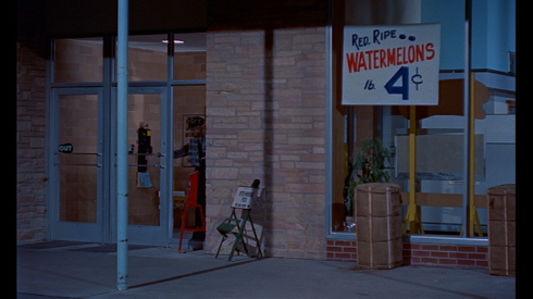 While the police and fire dept. look for the Blob in the supermarket, A SHOCKER!  Watermelon was 4 cents/lb.