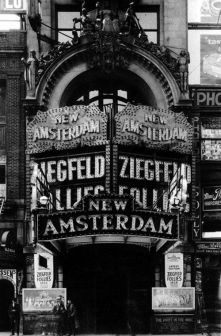 Marquee, New Amsterdam
