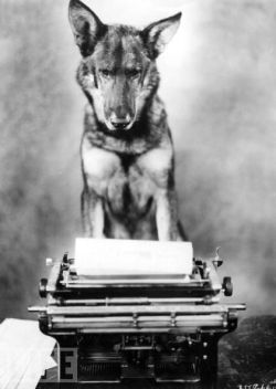 Rin Tin Tin answers fan mail