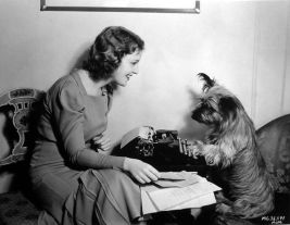 Jeanette MacDonald, her Terrier and fan mail.