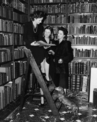 21 Nov 1940 --- Betsy Cushing, Mary Cushing, and Barbara Cushing, selecting books in Dr. A.S.W. Rosenbach's famous library, to be auctioned off for benefit of American Red Cross War Relief Fund. --- Image by © Bettmann/Corbis
