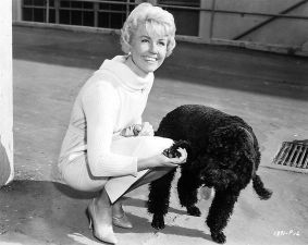 Doris Day