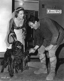 Maureen O´Hara´s Irish Setter Pogo greets Victor McLaglen