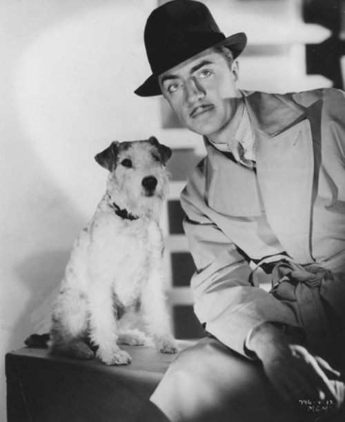 William Powell is Nick Charles and Skippy is his loyal pooch, Asta