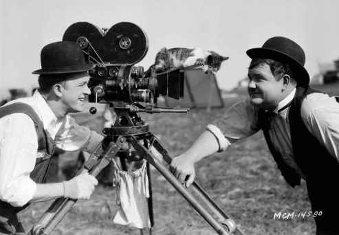 laurel-hardy-and-a-cat-on-the-camera