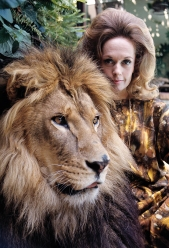 Tippi Hedren at home with her pet lion 1971 © 1978 Gene Trindl