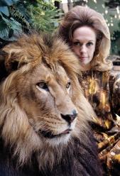 Tippi Hedren at home with her pet lion 1971 © 1978 Gene Trindl