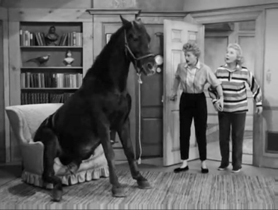 """Lucy Wins a Racehorse"" on The Lucy-Desi Comedy Hour."
